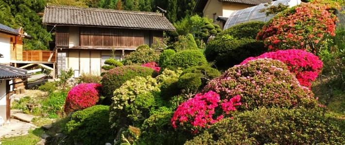 helping & farming – Japan in slow motion