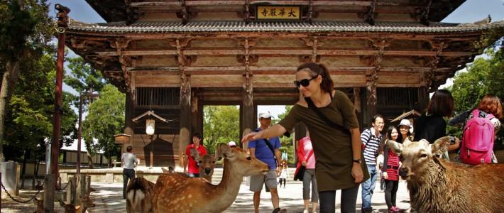 gallery – Japan, Nara